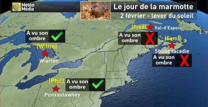 Le 2 février, c'est le jour de le marmotte dans le nord de l'Amérique