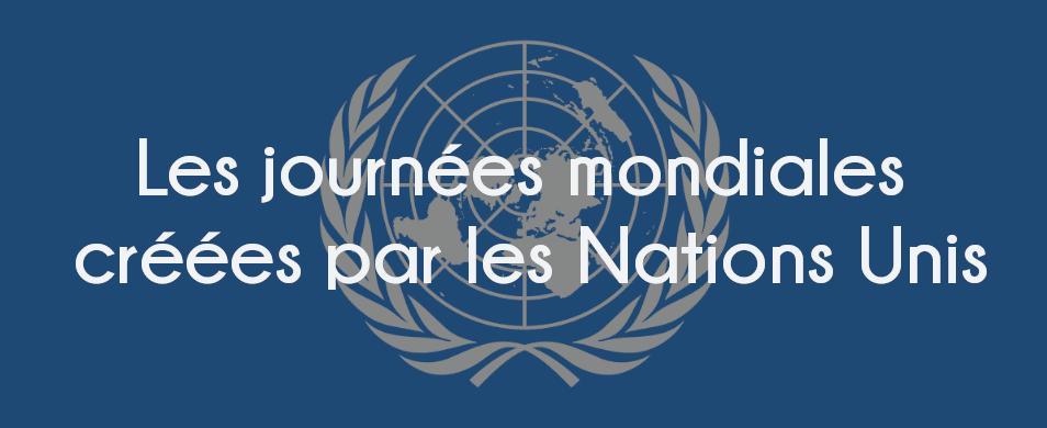 Image journée mondiale de l'ONU